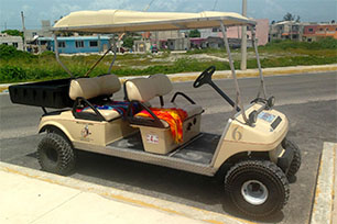 Golf Cart Apache
